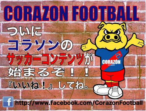 20130625VISION-football.jpg